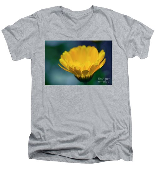 Men's V-Neck T-Shirt featuring the photograph Calendula by Sharon Mau