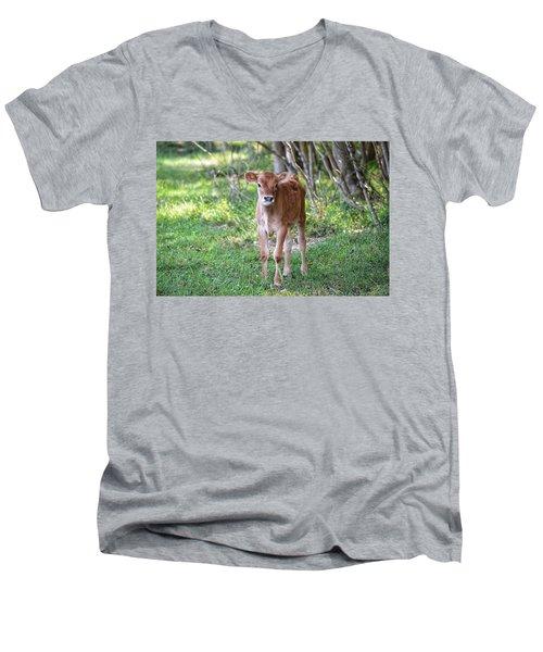 Calf  Men's V-Neck T-Shirt