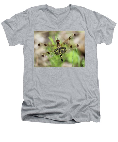 Calico Pennant  Men's V-Neck T-Shirt