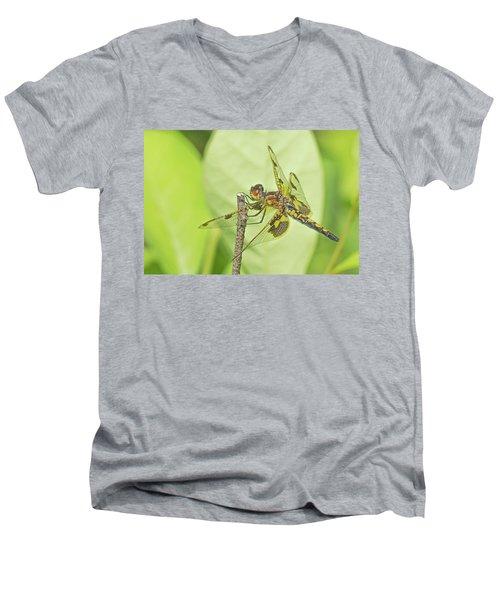 Calico Pennant Men's V-Neck T-Shirt
