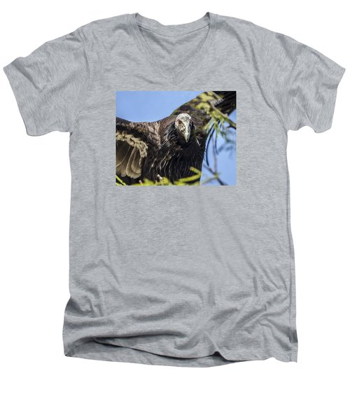 California Condor Portrait Men's V-Neck T-Shirt