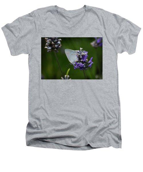 California Hairstreak Butterfly Men's V-Neck T-Shirt