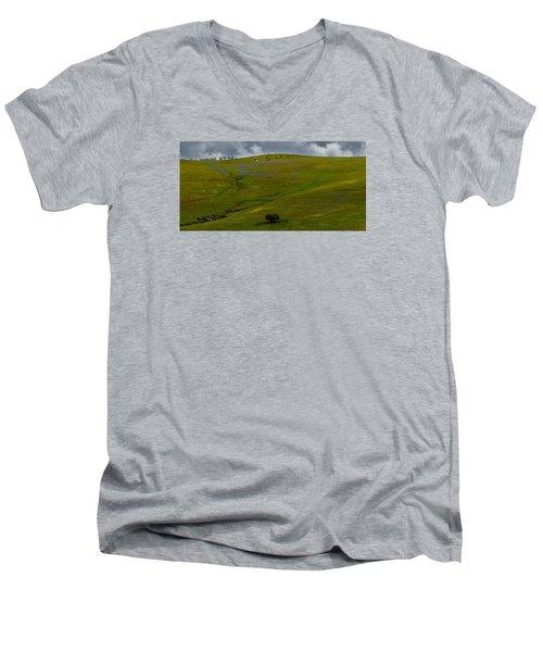 California Hillside Men's V-Neck T-Shirt