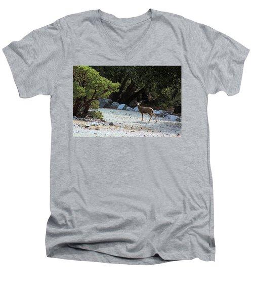 California Mule Deer Men's V-Neck T-Shirt