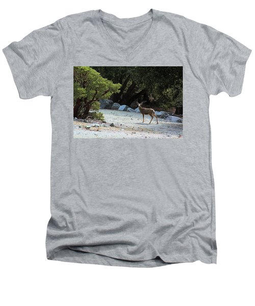California Mule Deer Men's V-Neck T-Shirt