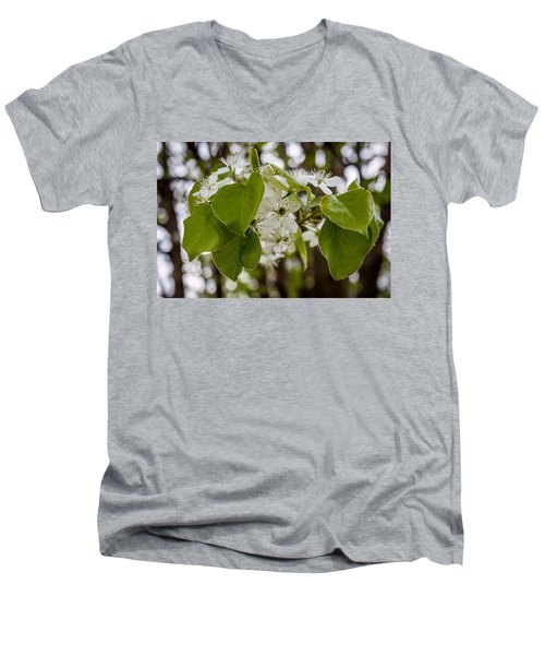 Callery Pear Tree Bloom Men's V-Neck T-Shirt