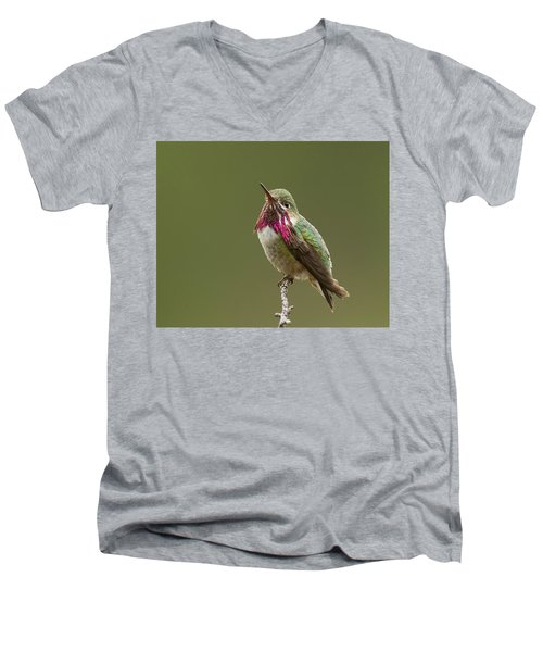 Men's V-Neck T-Shirt featuring the photograph Calliope Hummingbird by Doug Herr