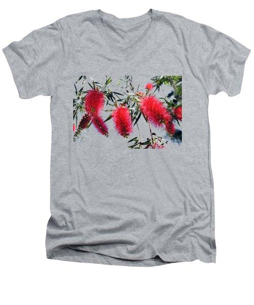 Callistemon - Bottle Brush T-shirt 3 Men's V-Neck T-Shirt