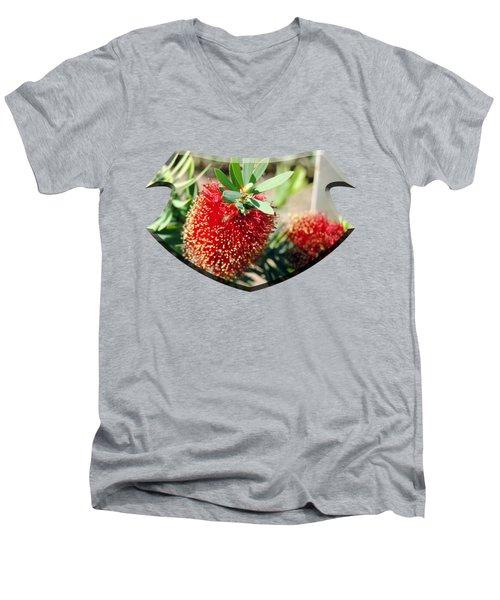 Callistemon - Bottle Brush T-shirt 4 Men's V-Neck T-Shirt