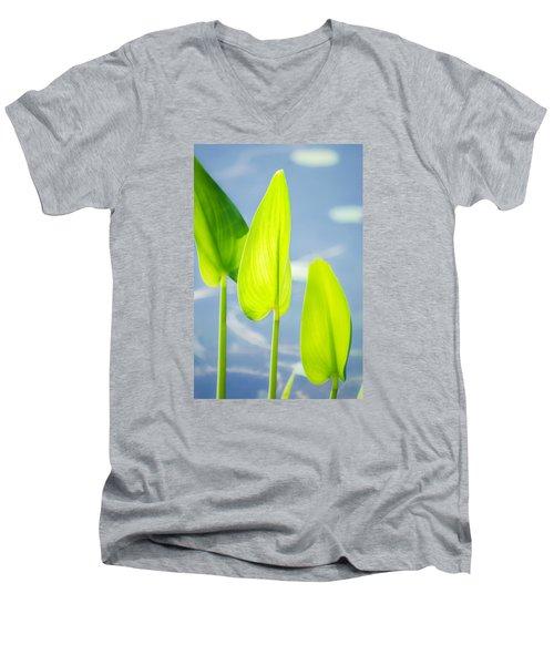 Calm Greens Men's V-Neck T-Shirt