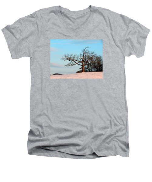 Calming Moments Men's V-Neck T-Shirt