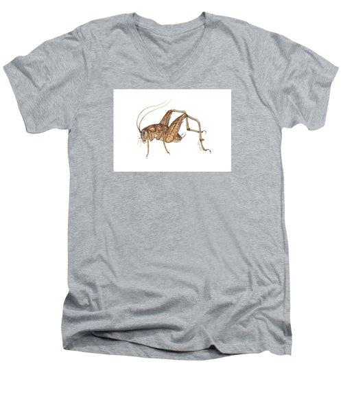 Camel Cricket Men's V-Neck T-Shirt by Cindy Hitchcock