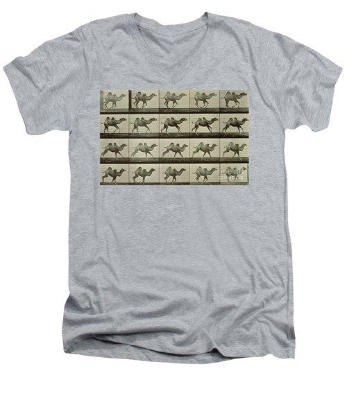 Camel Men's V-Neck T-Shirt