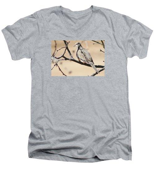 Camouflaged Mourning Dove Men's V-Neck T-Shirt