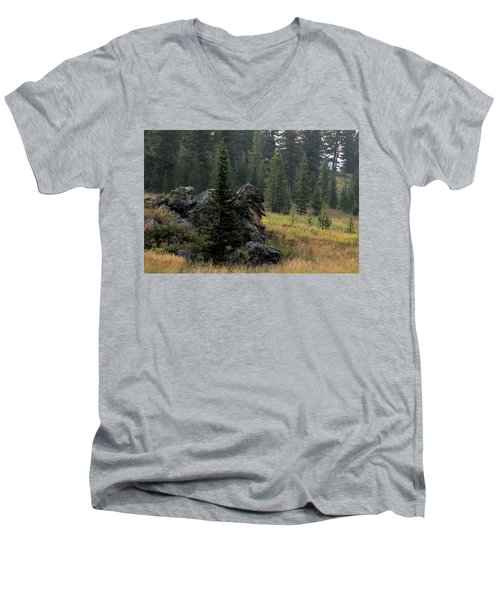 Campground Springs Men's V-Neck T-Shirt