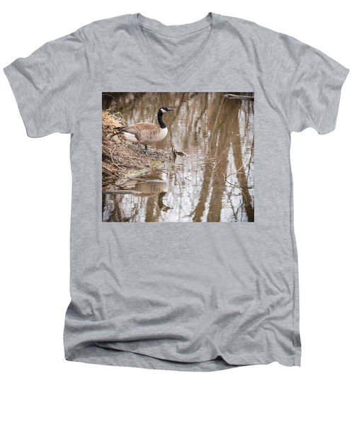 Canada Geese Reflection Men's V-Neck T-Shirt