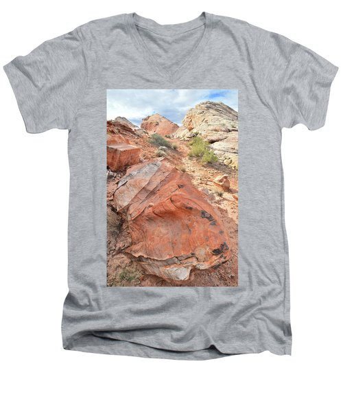 Canyon Of Color In Valley Of Fire Men's V-Neck T-Shirt by Ray Mathis