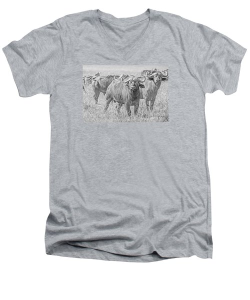 Men's V-Neck T-Shirt featuring the photograph Cape Buffalos In Serengeti by Pravine Chester