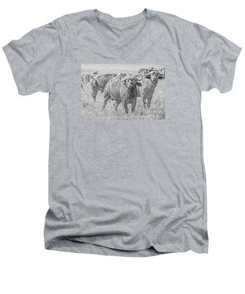 Cape Buffalos In Serengeti Men's V-Neck T-Shirt by Pravine Chester
