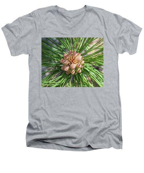 Captivating Pine Men's V-Neck T-Shirt