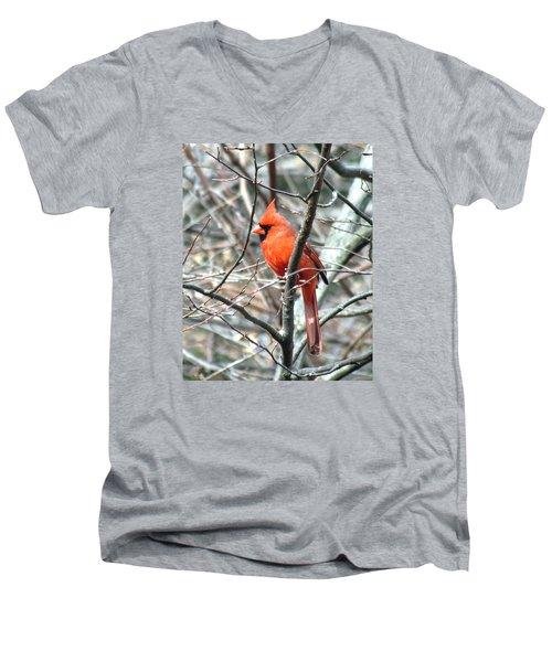 Cardinal 2 Men's V-Neck T-Shirt by George Jones