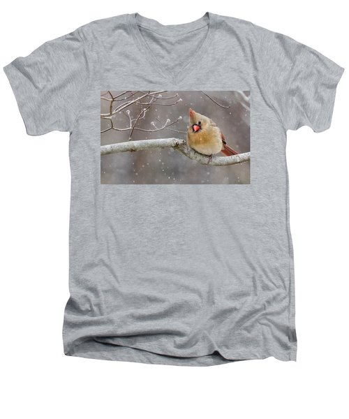 Cardinal And Falling Snow Men's V-Neck T-Shirt