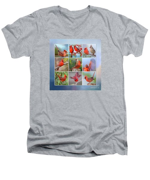 Cardinal Collage Men's V-Neck T-Shirt by Bonnie Barry