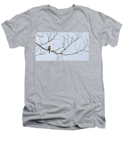 Men's V-Neck T-Shirt featuring the photograph Cardinal In Tree by Richard Rizzo