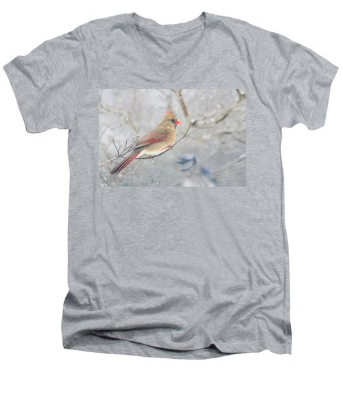 Cardinal In Winter Men's V-Neck T-Shirt