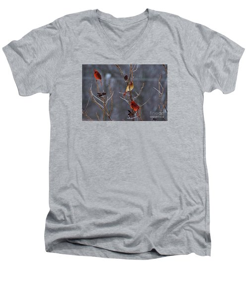 Cardinal Trio Men's V-Neck T-Shirt