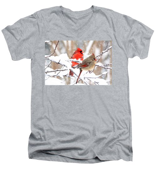 Cardinals In The Winter Men's V-Neck T-Shirt