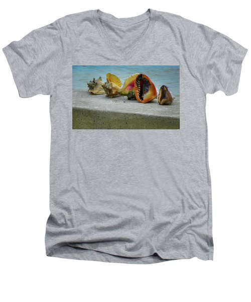 Caribbean Charisma Men's V-Neck T-Shirt by Karen Wiles