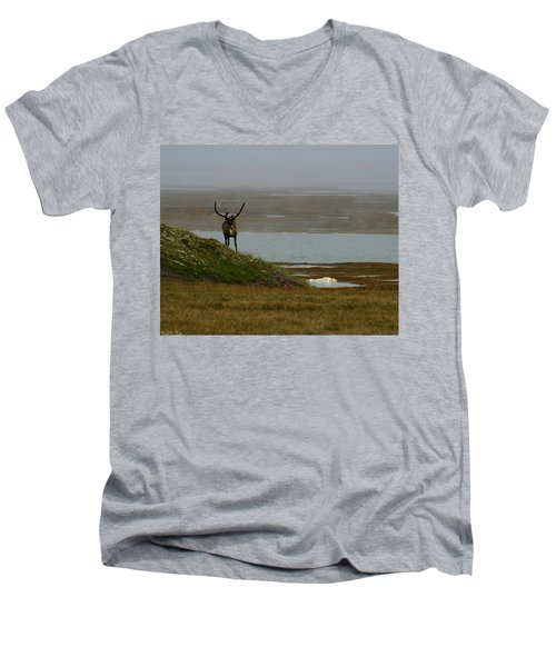 Caribou Fog Men's V-Neck T-Shirt