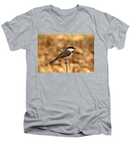 Carolina Chickadee On Branch Men's V-Neck T-Shirt