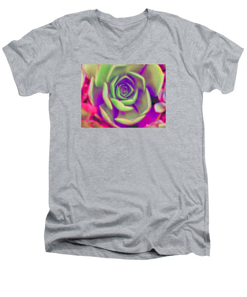 Carousel Men's V-Neck T-Shirt