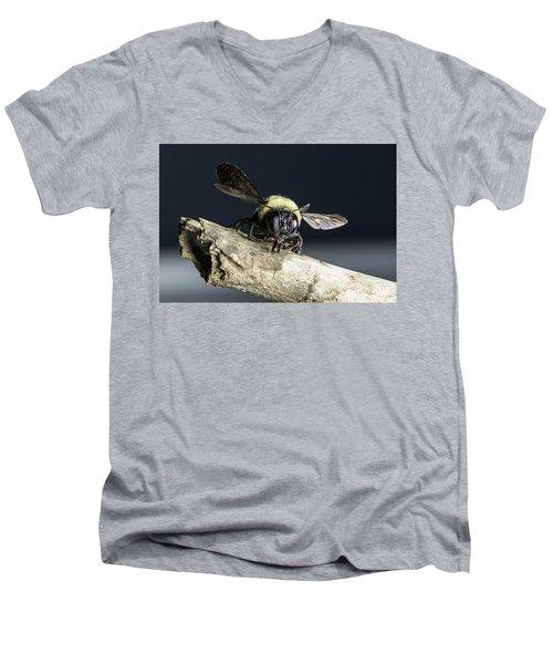 Carpenter Bee Men's V-Neck T-Shirt