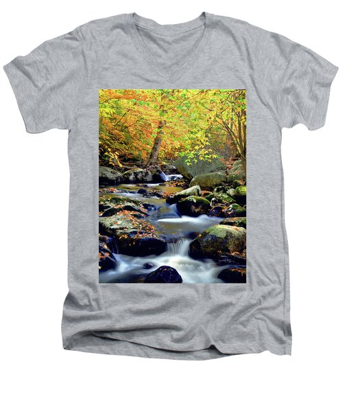 Cascade Brook Men's V-Neck T-Shirt