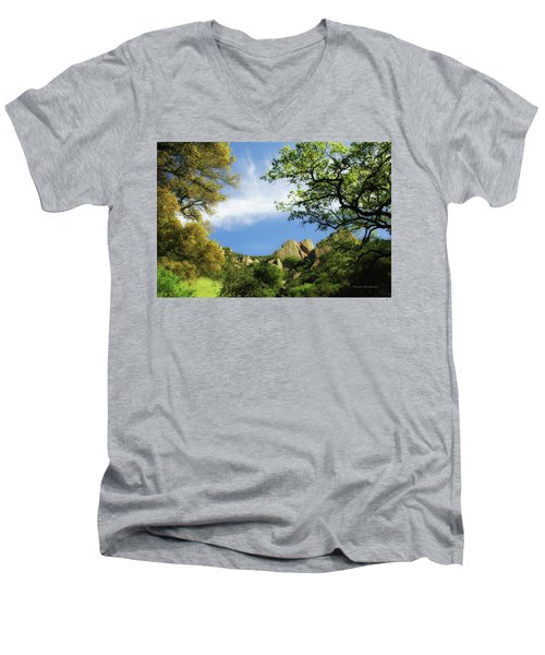 Castle Rock Men's V-Neck T-Shirt by Donna Blackhall