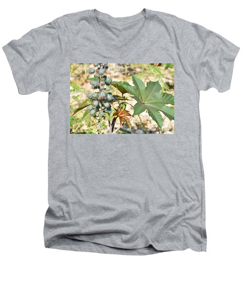 Men's V-Neck T-Shirt featuring the photograph Castor Oil Plant by Ray Shrewsberry
