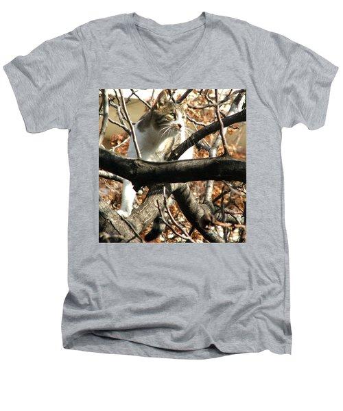 Cat Hunting Bird Men's V-Neck T-Shirt by Judi Saunders