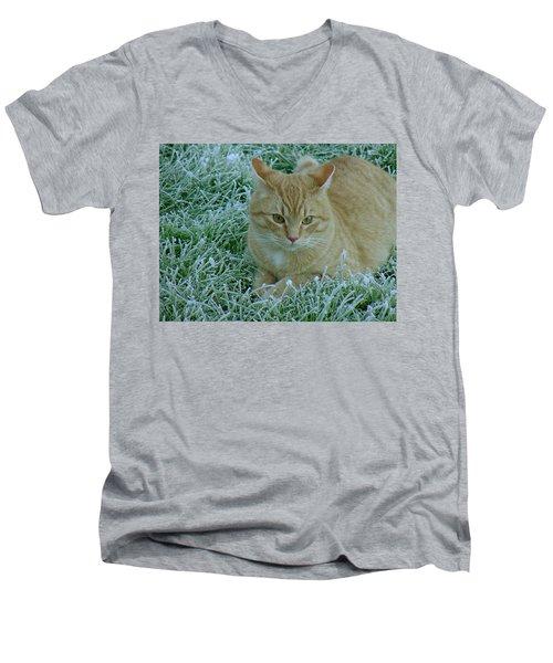 Cat In Frosty Grass Men's V-Neck T-Shirt