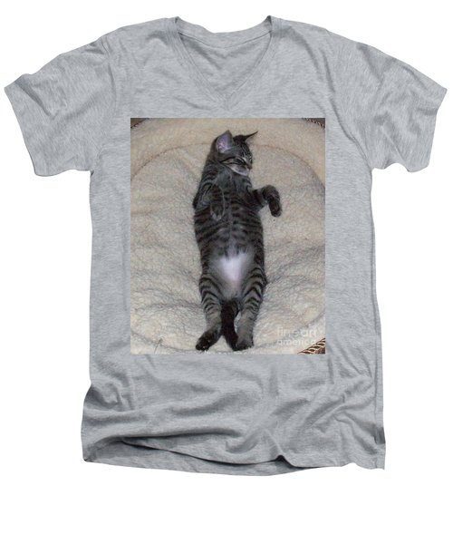 Cat In Repose Men's V-Neck T-Shirt