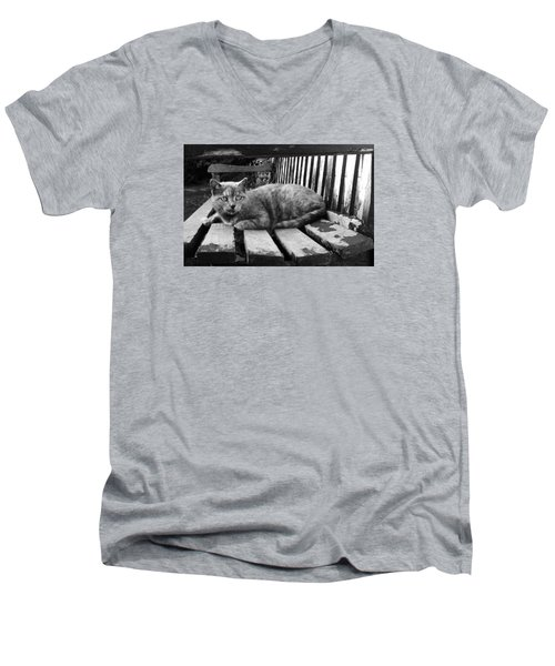 Men's V-Neck T-Shirt featuring the photograph Cat On A Seat by RKAB Works