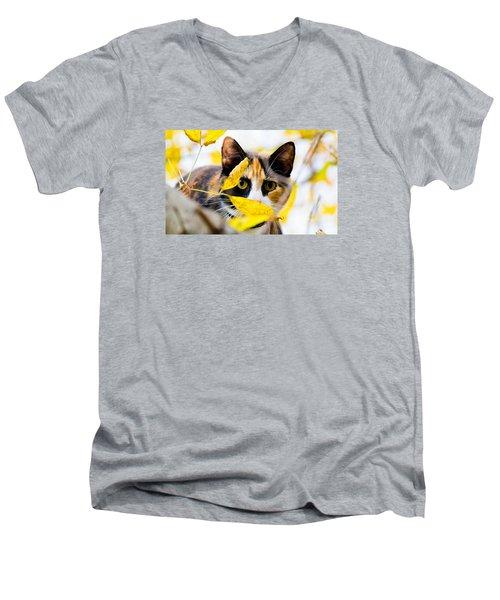 Cat On The Prowl Men's V-Neck T-Shirt by Jonny D