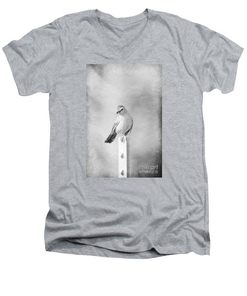 Catbird Men's V-Neck T-Shirt