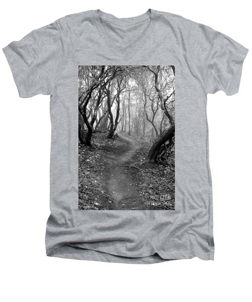 Cathedral Hills Serenity In Black And White Men's V-Neck T-Shirt by Marie Neder