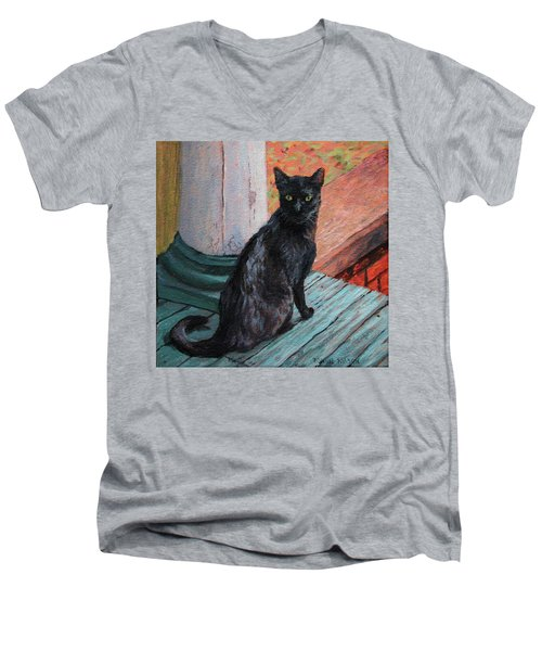 Cat's Pause Men's V-Neck T-Shirt