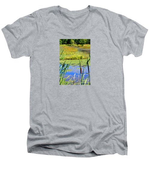 Cattail Men's V-Neck T-Shirt by Chris Anderson