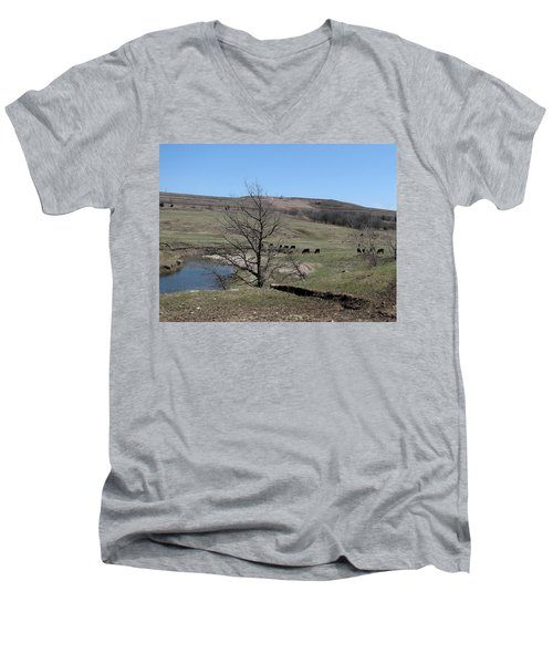 Cattle Along Deep Creek Men's V-Neck T-Shirt