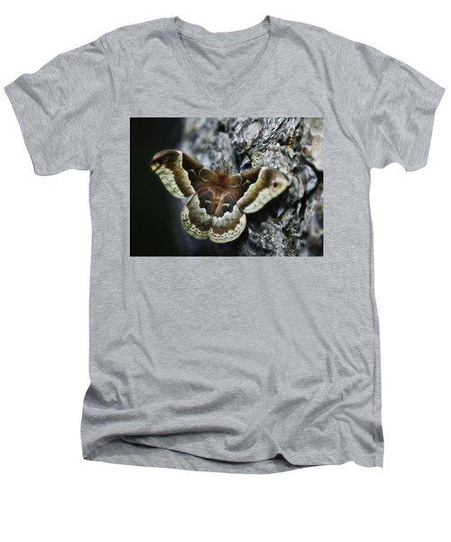 Cecropia Moth Men's V-Neck T-Shirt